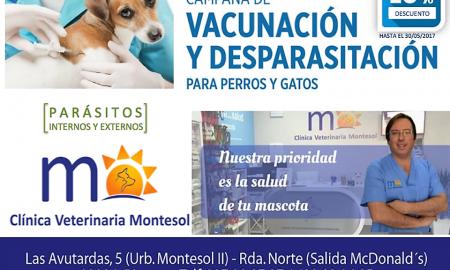 ESPAÑA CLINICA VETERINARIA MEJOSTILLA CACERES MONTESOL