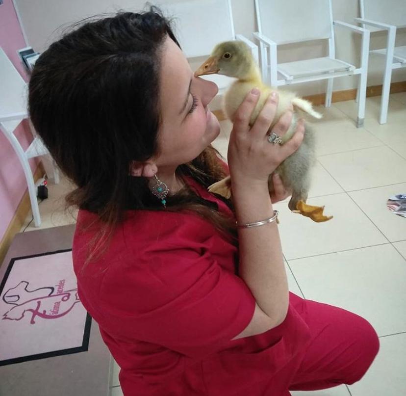 Urgencias Veterinarias en la Vera Fatima Paredes Jaraiz de la Vera