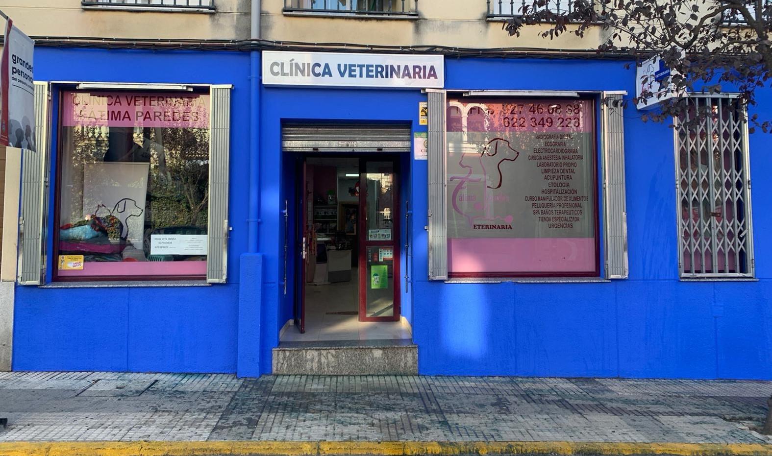 Veterinario en la Vera Fatima Paredes Jaraiz