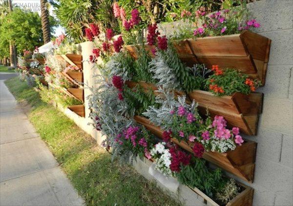 españa floristeria en almendralejo y piscinas castaño y rufipool