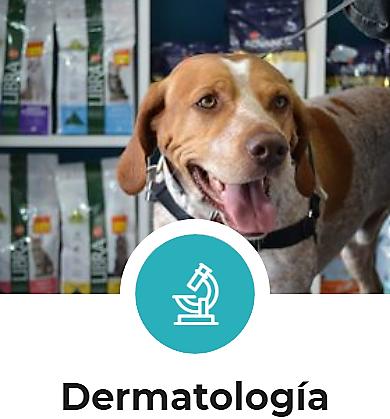 España Clínica veterinaria en Cáceres Montesol