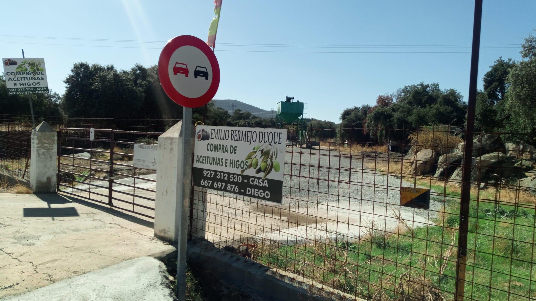 Donde vender las aceitunas Montanchez , Torre Santa maria , Valdefuentes , Torremocha , Albala , Trujillo , Cáceres Emilio Bermejo
